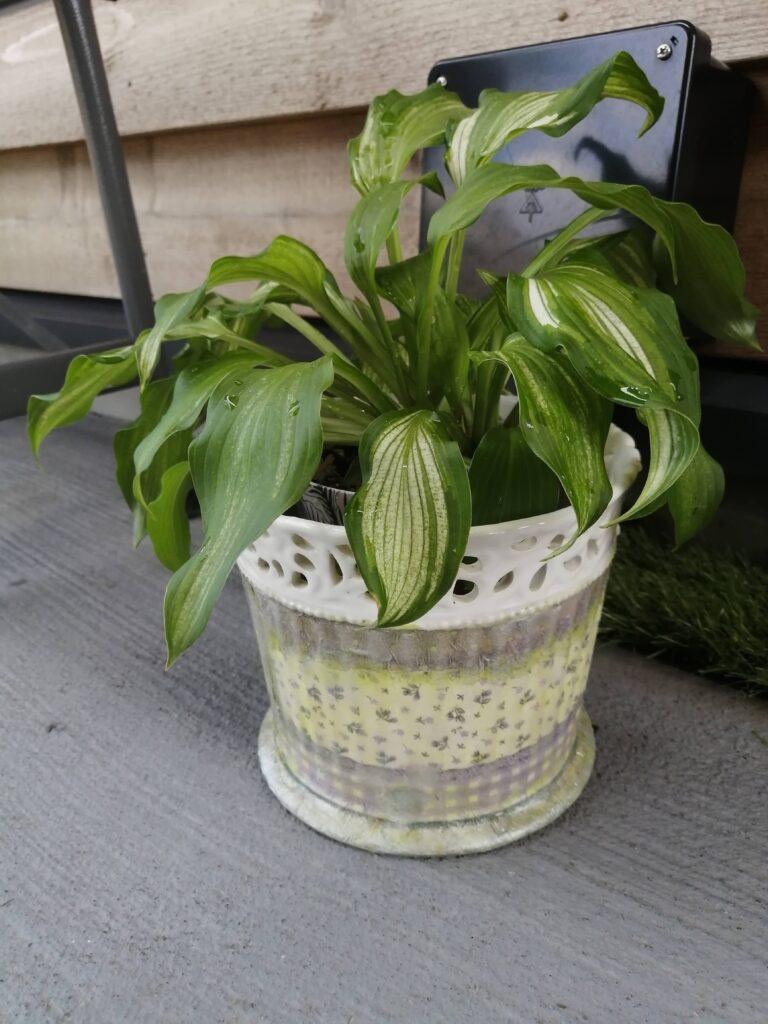 リメイクデコパージュ‼️(植木鉢)