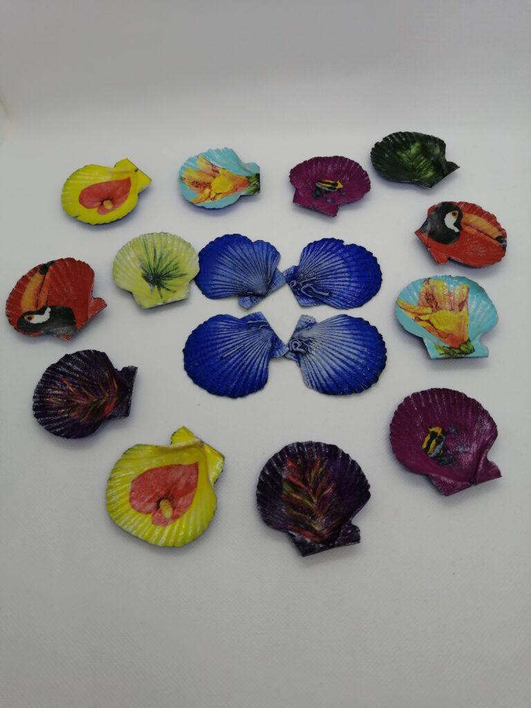 貝殻シェル🐚色々ワークショップ開催します!